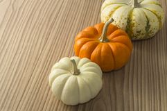 Pumkin Stock Images