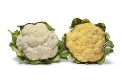 Fresh yellow and white Cauliflower stock image