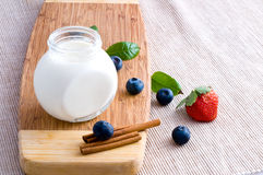 Fresh yoghurt Royalty Free Stock Photos