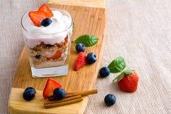 Fresh yoghurt Stock Images