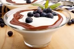 Fresh yoghurt with blueberries and caramel sauce Royalty Free Stock Images