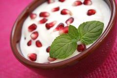 Fresh yogurt Royalty Free Stock Photography