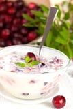 Fresh yogurt with berries Stock Images