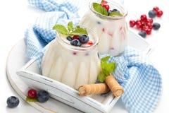 Fresh yogurt with berries. Fresh yogurt with mint and berries Royalty Free Stock Images