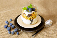 Fresh Yogurt with blueberries . Stock Images