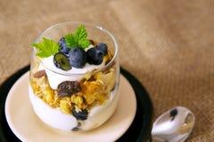 Fresh Yogurt with blueberries . Stock Image