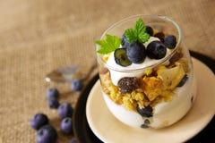 Fresh Yogurt with blueberries . Stock Photos