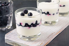 Fresh yogurt and blueberries dessert Royalty Free Stock Images