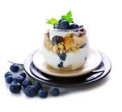 Fresh Yogurt with blueberries Stock Photos