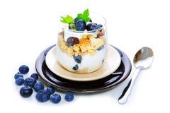 Fresh Yogurt with blueberries Royalty Free Stock Photos