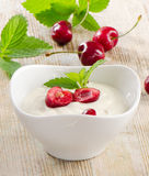 Fresh yogurt Royalty Free Stock Images