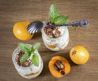 Fresh Yogurt with Loquats and Flaxseed Stock Photos