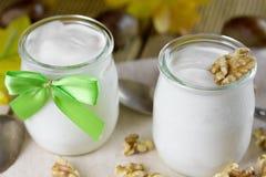 Fresh yogurt with nuts. Stock Photography