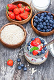 Fresh yogurt with oat flakes and berries Royalty Free Stock Image