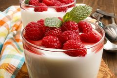 Fresh yogurt with raspberries and sauce in a glass Royalty Free Stock Photos