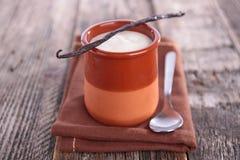Fresh yogurt Stock Images