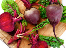 Fresh Young Beet Royalty Free Stock Images
