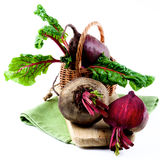Fresh Young Beet Stock Photography