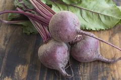 Fresh Young Beetroot Stock Photography