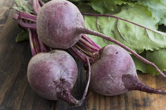 Fresh Young Beetroot Royalty Free Stock Photos