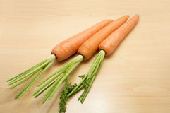 Fresh young carrot vegetable Stock Image