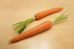 Fresh young carrot vegetable  Royalty Free Stock Photo