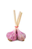 Fresh young garlic  on a white background Stock Photo