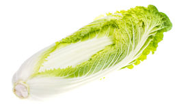 Fresh young green chinese cabbage isolated on white background Stock Photos