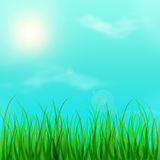Fresh young green grass and blue sky with clouds. Spring. Royalty Free Stock Photography