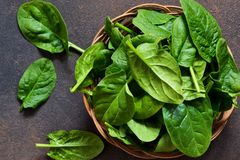 Fresh, young green spinach on a concrete background. View from above. Fresh, young green spinach on a concrete background stock photography