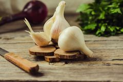 Fresh young organic garlic on a gray wooden background. Selectiv royalty free stock images
