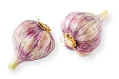 Fresh Young Pink Garlic Stock Images