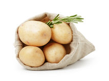 Fresh young potato in sack bag with rosemary Stock Image