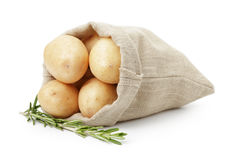 Fresh young potato in sack bag with rosemary Royalty Free Stock Images