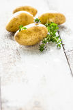 Fresh young potatoes Royalty Free Stock Photography