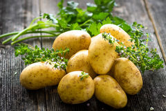 Fresh young potatoes Royalty Free Stock Image