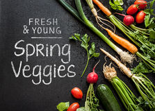 'Fresh and young spring veggies' poster design. Vegetables on black chalkboard from above. Stock Photo