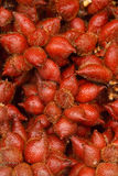 Fresh Zalacca fruit for sell in the market, thailand Royalty Free Stock Image