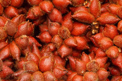 Fresh Zalacca fruit for sell in the market, thailand Stock Photos