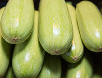 The fresh the zucchini. Background Royalty Free Stock Photos