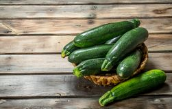 Fresh zucchini in the basket royalty free stock photo