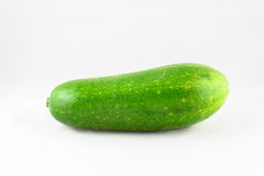 Fresh zucchini Royalty Free Stock Images