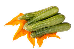 Fresh zucchini or courgettes with flower Royalty Free Stock Photo