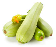 Fresh zucchini with flower isolated on white Royalty Free Stock Photography