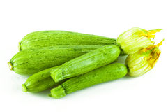 Fresh Zucchini with flower Stock Photos