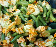 Fresh Zucchini With Flowers For Sale Stock Image