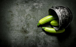 Fresh zucchini in the old pot. Royalty Free Stock Photo