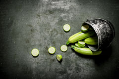 Fresh zucchini in the old pot. Stock Image