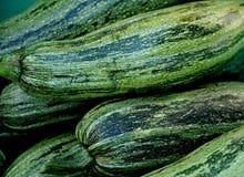 Fresh Zucchini Squash Stock Photos