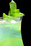 Freshening cocktail with ice and mint Royalty Free Stock Image